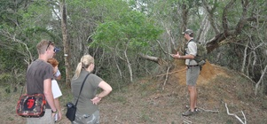 FREE GUIDED BUSH WALK FOR DIRECT BOOKINGS!