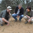 Specialist Fiedl Guiding at Bushwillow Collection, Hluhluwe