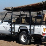 Game drive safari in Hluhluwe Umfolozi