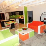 Lounge, Green Monkey Orange, Boutique, Bushwillow Collection