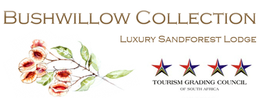 Bushwillow Collection Luxury Sand Forest Lodge